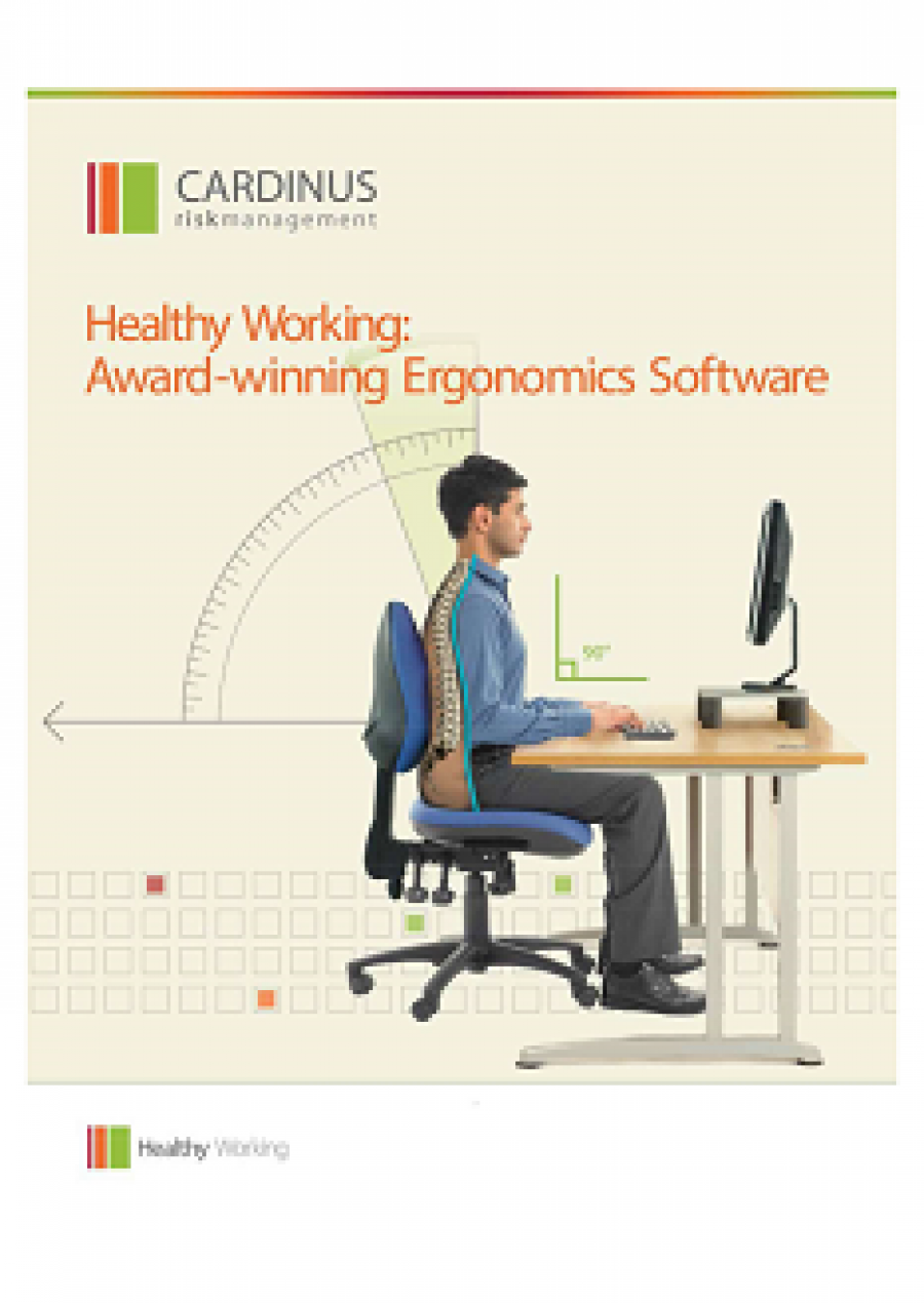 Healthy Working Brochure