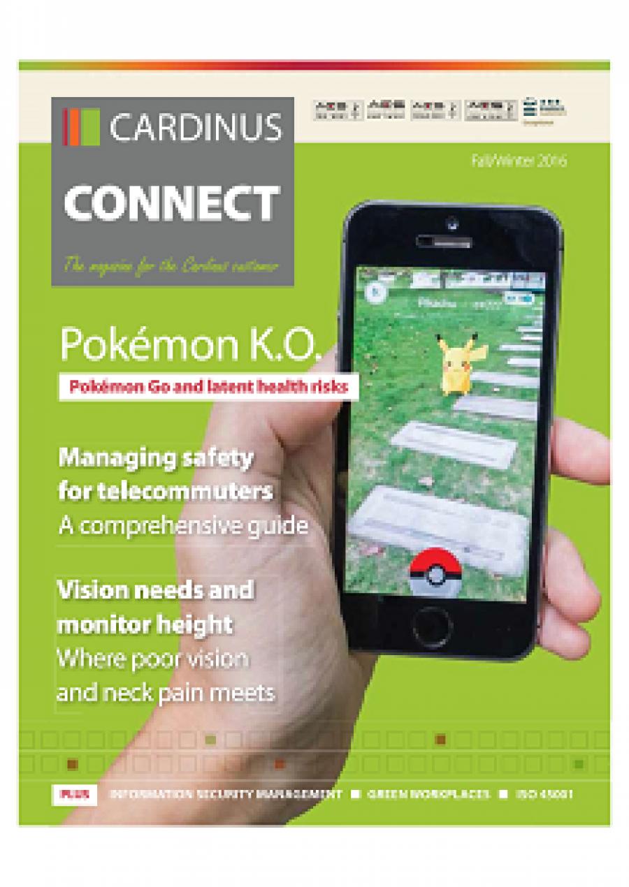 Pokémon K.O.