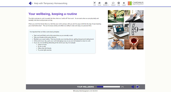 Screenshot of your wellbeing, keeping a routine homeworking page