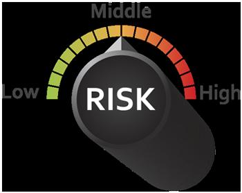 Fleet Risk Audit