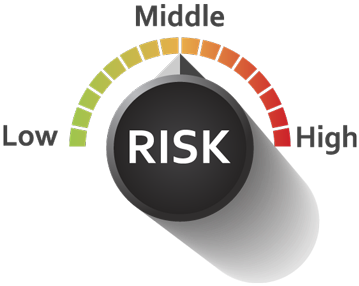Fleet Risk Audit Tool