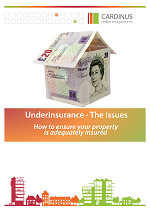 Front cover of underinsurance, the issues