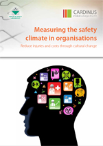 WP - Measuring the safety climate in organisations