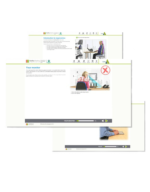 Screenshots from DSE e-learning software Healthy Working
