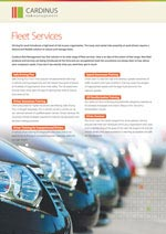fleet-risk-services