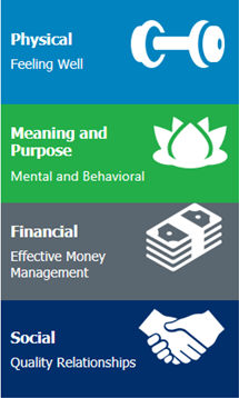 Cardinus positive workplace factors graphic: physical, meaning, financial and social