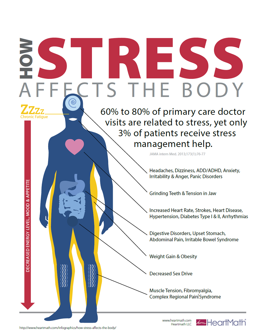 How stress affects the body infographic by Cardinus