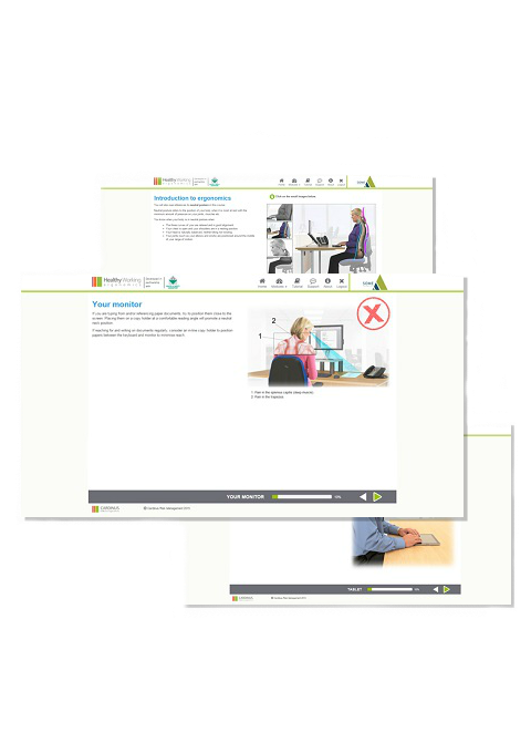 Screenshots from Healthy Working DSE Software